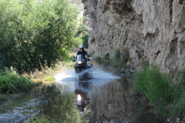 skimming through the water