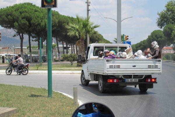 public transport III