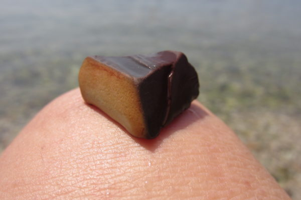 chocolate or stone