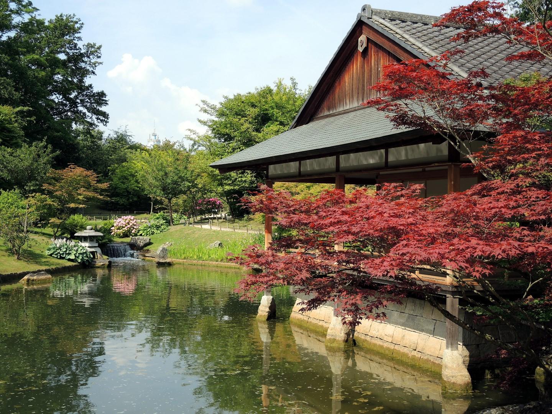 Japón en Bélgica