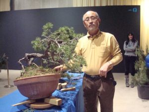 kengai2 (2008) Jere pino silvestris