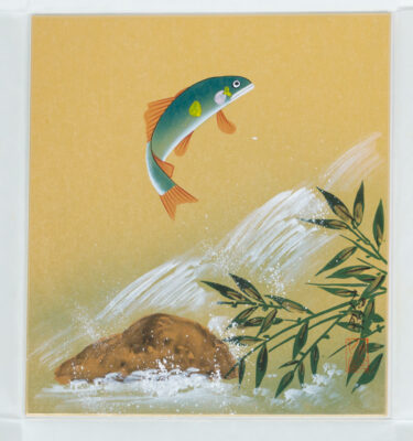 July Shikishi, motive: Salmon  jumping