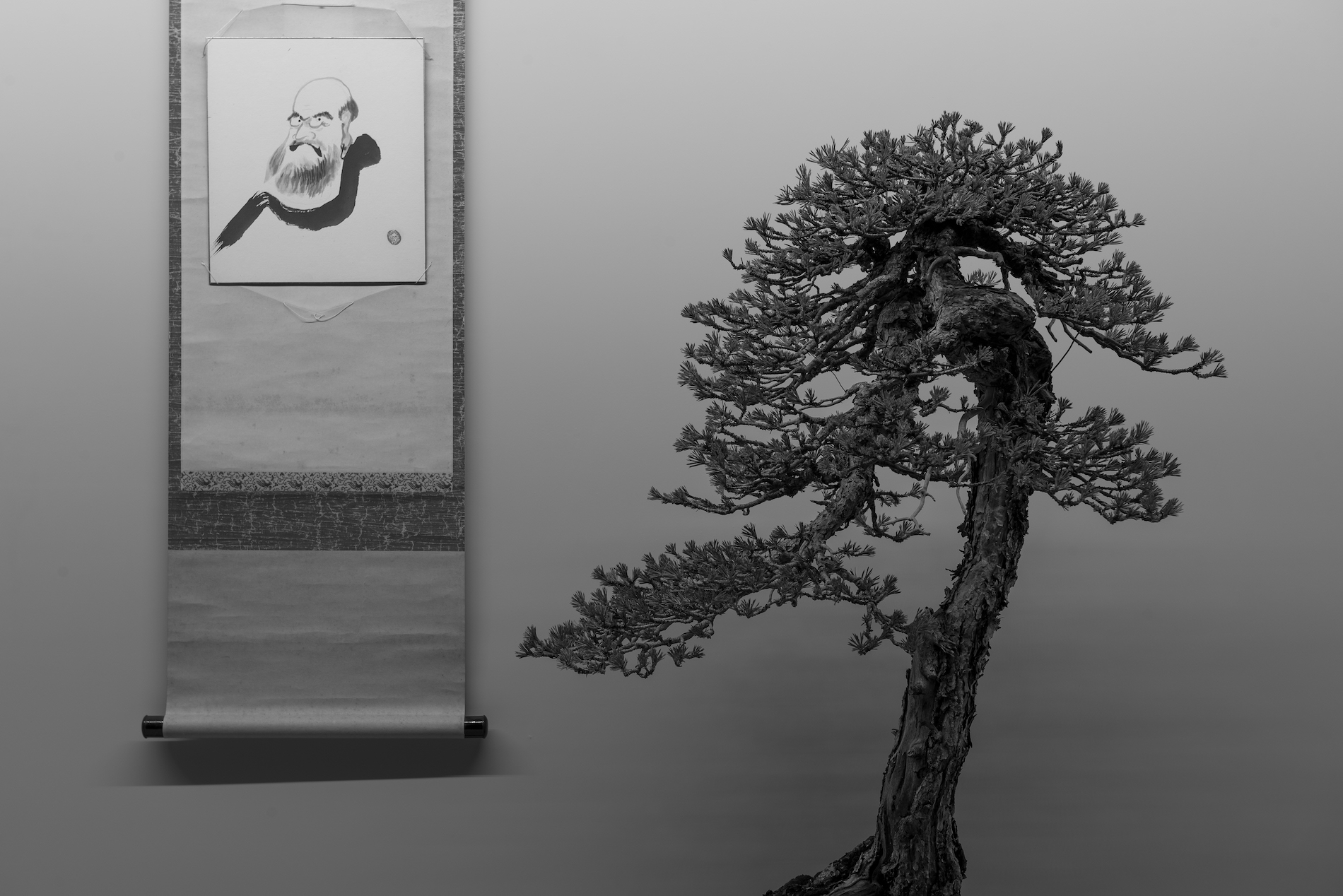 La poesía es un bonsai invisible, el bonsai es un poema visible